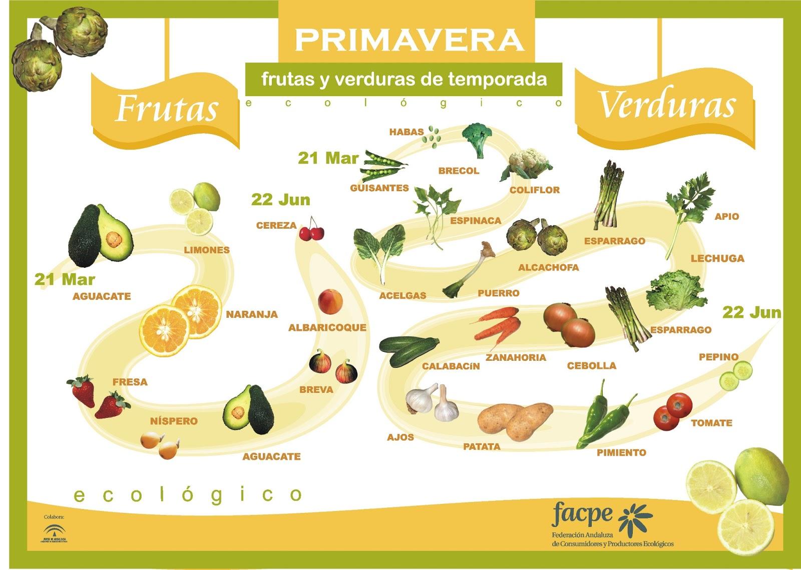 Las frutas y verduras de temporada de primavera (gráfico)
