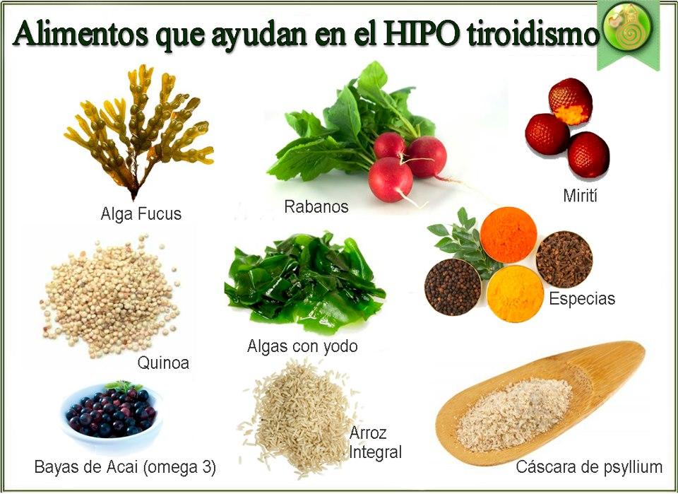 alimentos recomendados para personas con hipertiroidismo