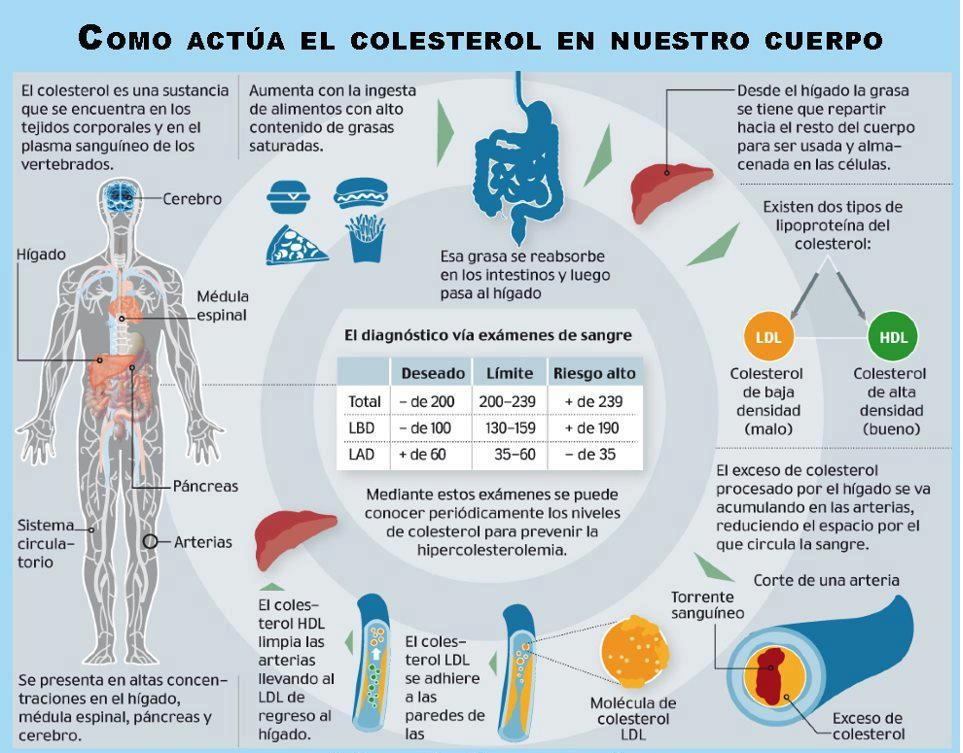 Medicamentos para bajar de peso rapido debe utilizar como