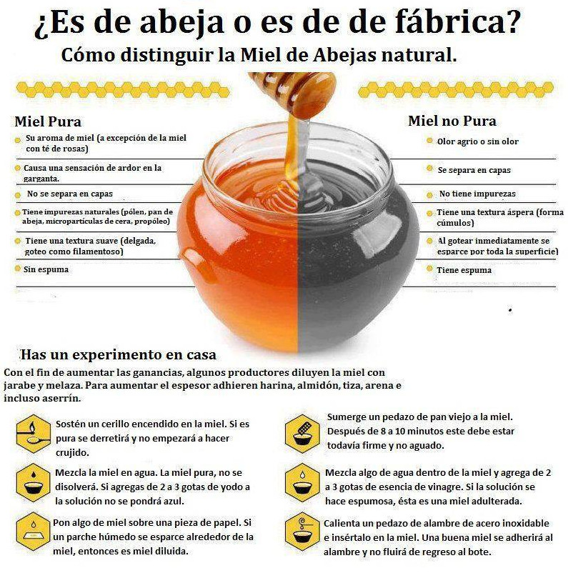 Como Saber si la Miel es Pura video 888 Dr Javier E Moreno ...