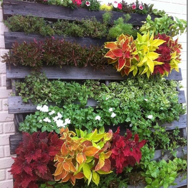 C mo hacer un jard n vertical con un palet - Construir jardin vertical ...